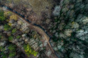 nature, Trees, Water, River, Aerial view