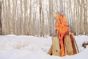 winter, Snow, Cold, Wood, Fireplace, Trees