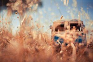 Kim Leuenberger, Car, Worm&039;s eye view, Vehicle, Toy, VW Kombi