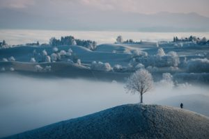 landscape, Winter, Nature