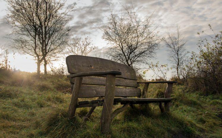 outdoors, Bench, Sunlight, Trees, Landscape HD Wallpaper Desktop Background