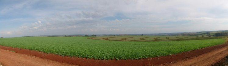 landscape, Clouds, Crops, Brazil, Nature, Ultra wide, Sky HD Wallpaper Desktop Background