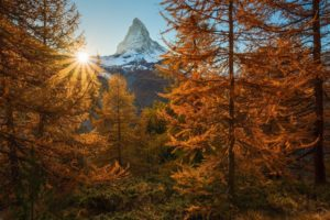 nature, Photography, Landscape, Snowy peak, Sunset, Fall, Trees, Sun rays, Forest, Mountains, Alps, Switzerland, Matterhorn, Switzerland
