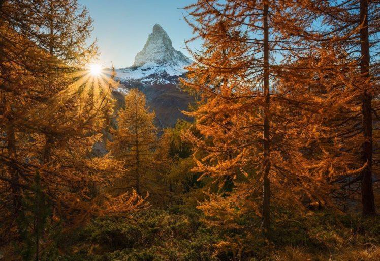 nature, Photography, Landscape, Snowy peak, Sunset, Fall, Trees, Sun rays, Forest, Mountains, Alps, Switzerland, Matterhorn, Switzerland HD Wallpaper Desktop Background