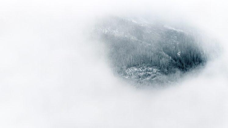 nature, Landscape, Trees, Forest, Mist, White background, Winter, Snow, Pine trees, Bird&039;s eye view, Hills HD Wallpaper Desktop Background