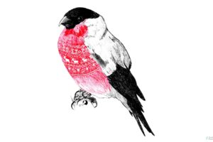 Bullfinch, Traditional art, Sweater