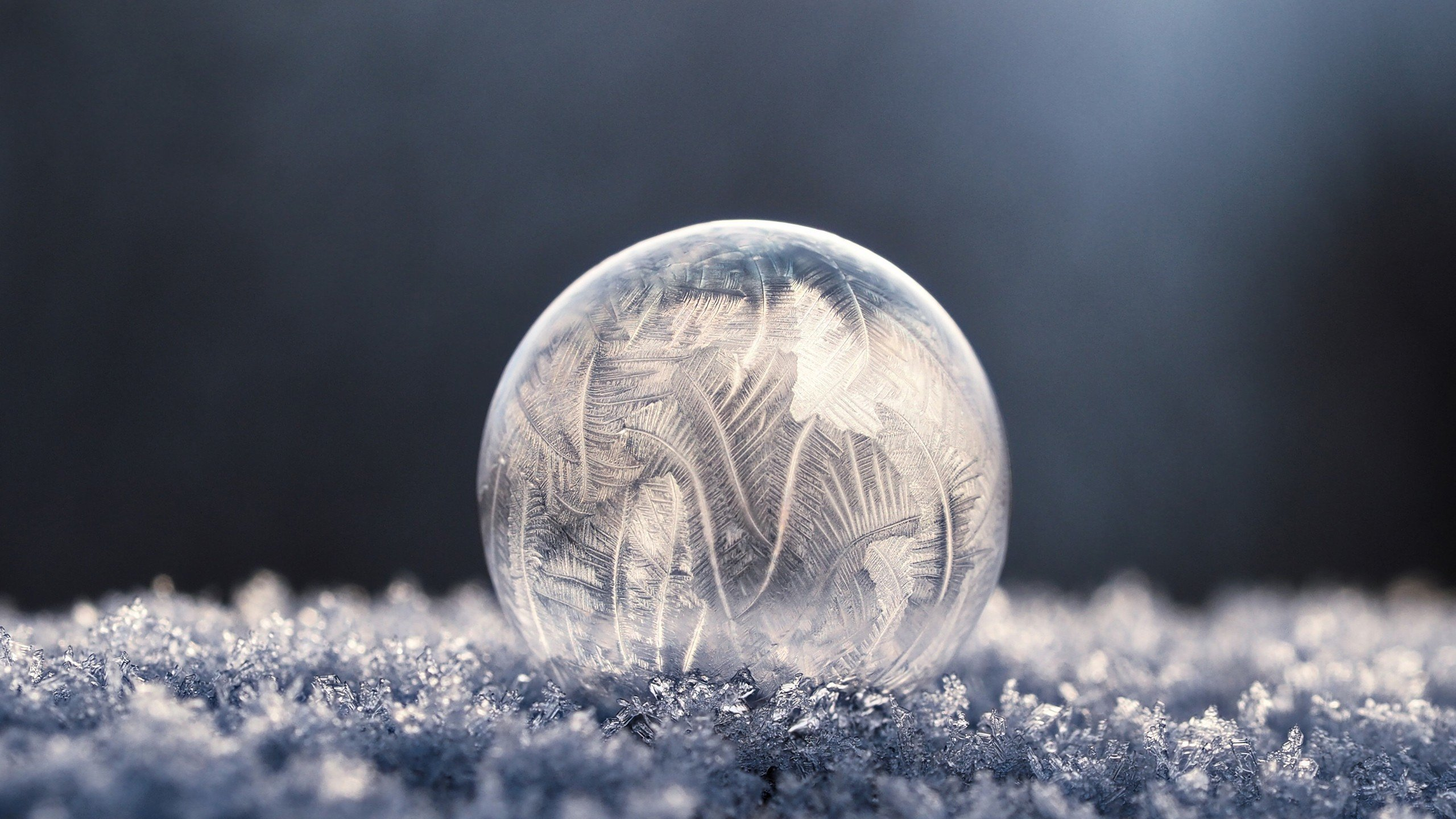 bubbles, Soap, Frost, Winter, Frozen bubble, Macro, Ice HD Wallpapers /  Desktop and Mobile Images & Photos