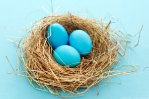 nests, Eggs, Blue background