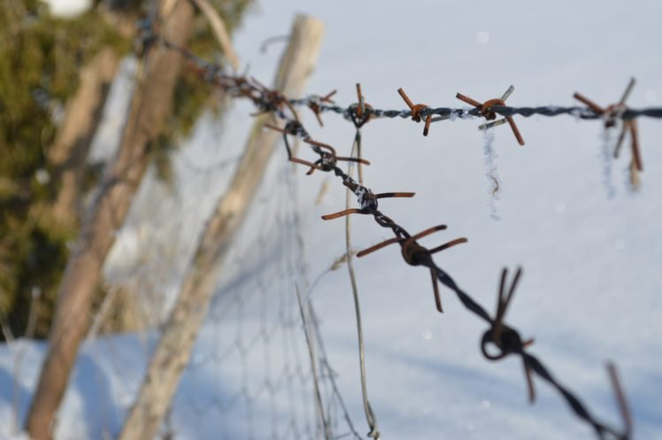 barbed wire HD Wallpapers / Desktop and Mobile Images & Photos
