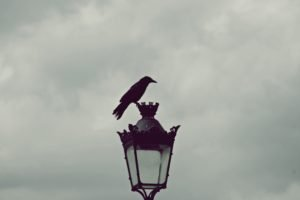 Paris, Street light, Horizon, Gray, Raven