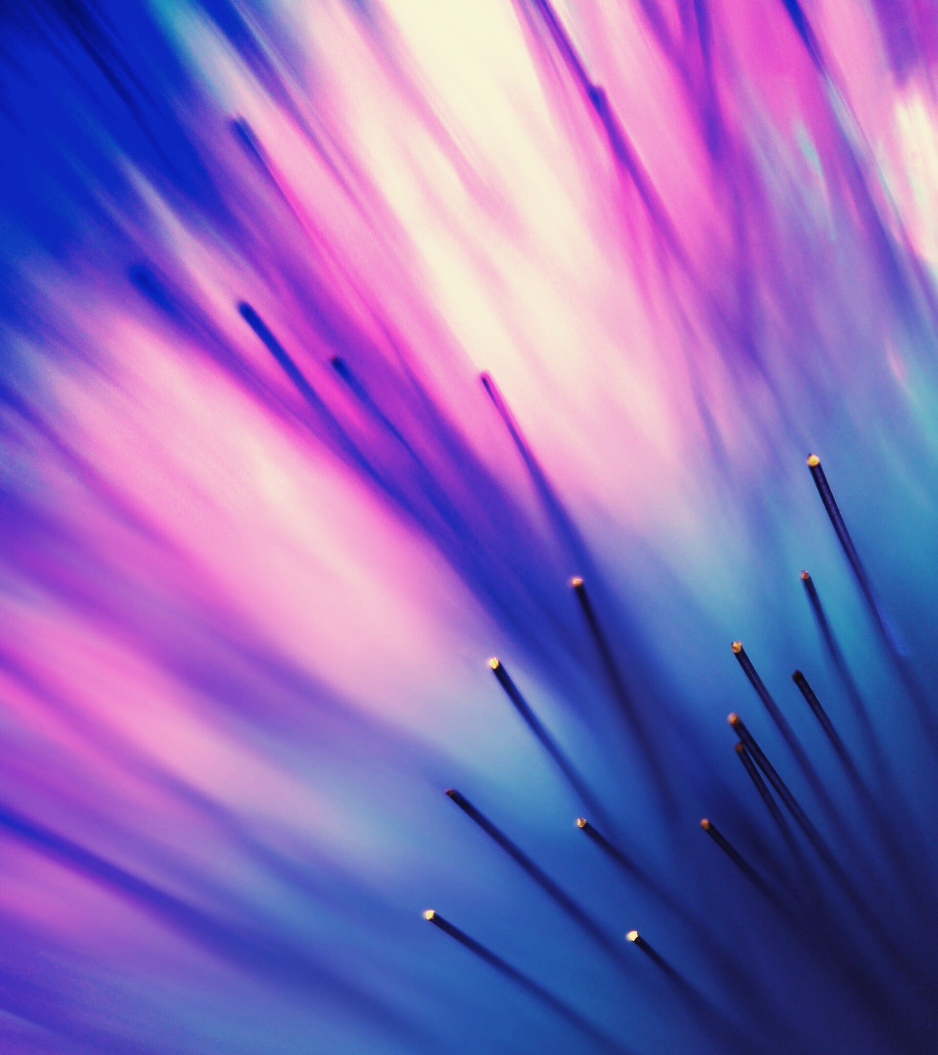 Pattern, Optic Fiber, Macro HD Wallpapers / Desktop And