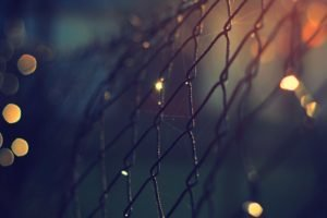 bokeh, Fence, Depth of field, Macro, Sunlight