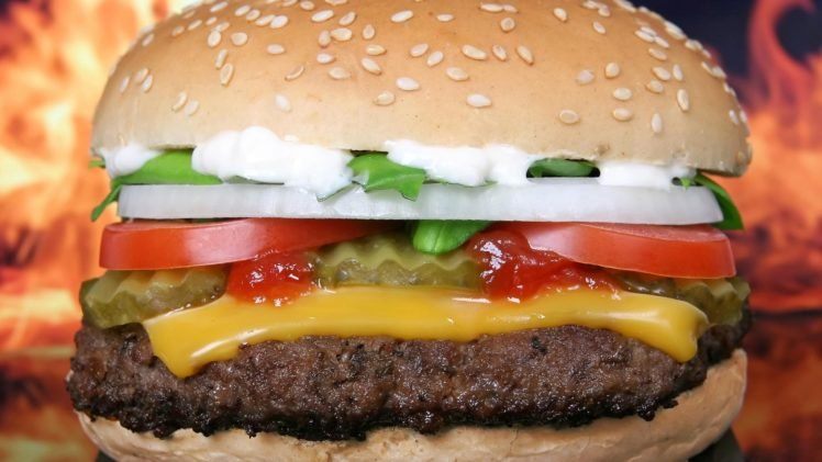 Food Closeup Burger Cheese Hd Wallpapers Desktop And