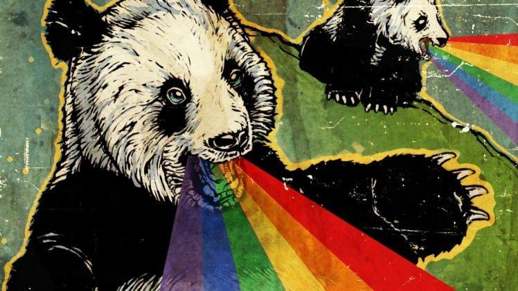 Panda Hd Wallpapers Desktop And Mobile Images Photos