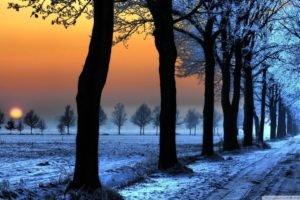 road, Sunset, Snow, Winter, Field, Trees