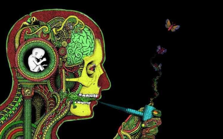 face, Brain, H. R. Giger, Pipes, Butterfly, Rastafari HD Wallpaper Desktop Background