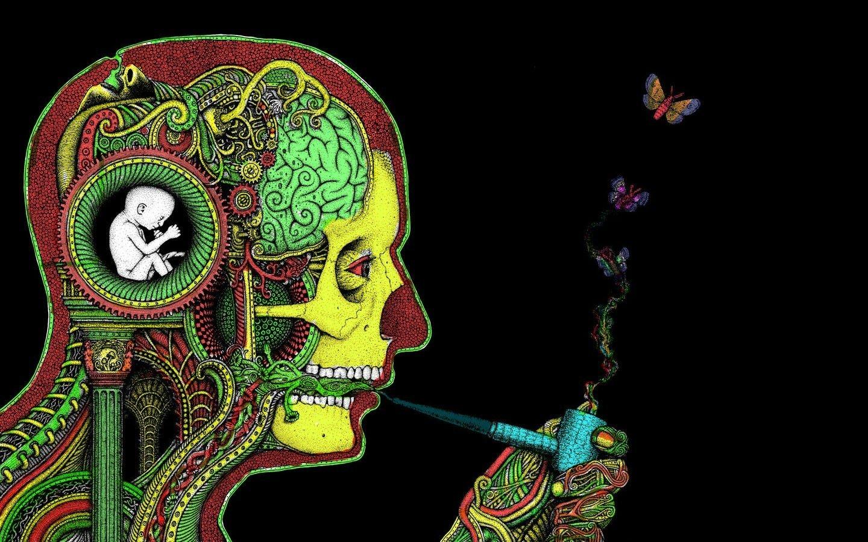 face, Brain, H. R. Giger, Pipes, Butterfly, Rastafari Wallpaper