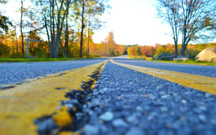 road, Trees, Closeup, Worm&039;s eye view HD Wallpaper Desktop Background