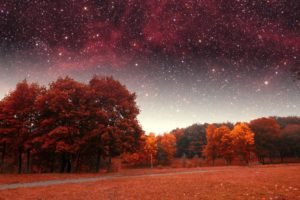 stars, Fall