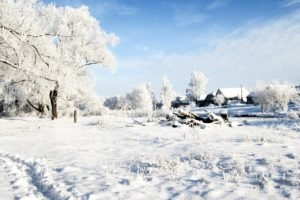 winter, Snow, Russia, Trees, Clouds