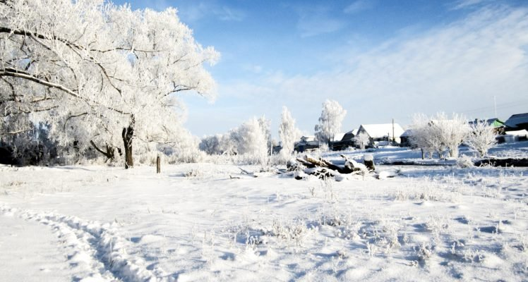 winter, Snow, Russia, Trees, Clouds HD Wallpaper Desktop Background