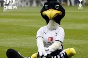 eyes, Blue eyes, Chirpy, Tottenham Hotspur, Tottenham, Mascot, Photography, Premier League, Soccer pitches, Soccer, COYS, Spurs