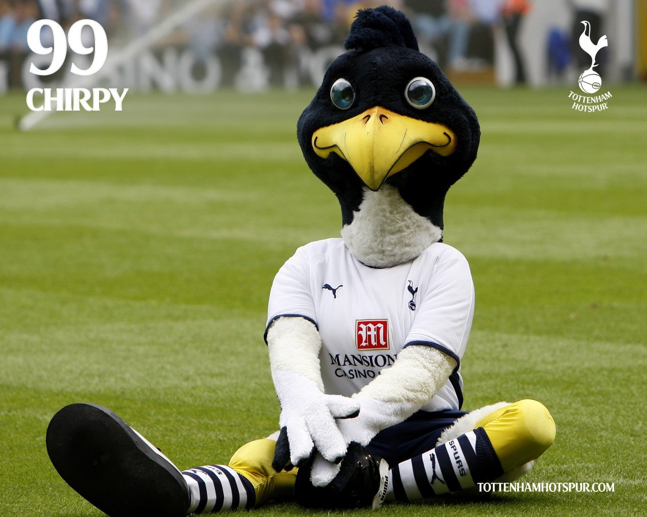 Eyes Blue Eyes Chirpy Tottenham Hotspur Tottenham Mascot Photography Premier League Soccer Pitches Soccer Coys Spurs Hd Wallpapers Desktop And Mobile Images Photos