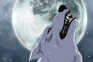 wolf, Manga