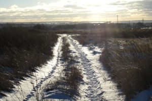 Russia, Winter, Snow, Road, Path, Dirt road
