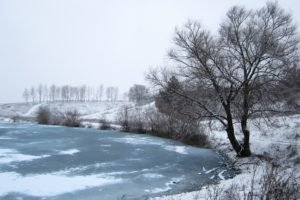 Russia, Winter, Snow, Trees, River, Ice