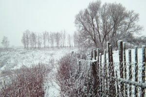 Russia, Winter, Snow, Trees, Fence