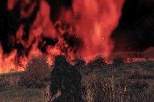 DayZ, Arma 2, Arma II, Steam (software), Video games, Fire, Forest, Night, Screen shot
