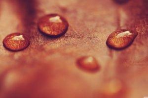 water drops, Leaves