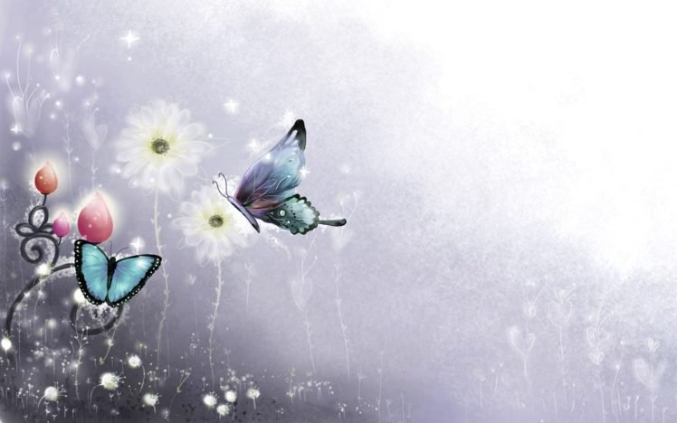 butterfly HD Wallpaper Desktop Background