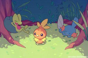 Torchic, Pokémon, Treecko, Mudkip