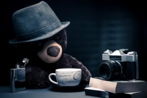 camera, Alcohol, Coffee, Teddy bears, Books