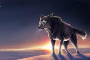 wolf, Tundra, Moon