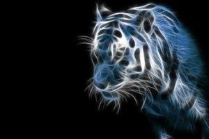 Fractalius, Tiger
