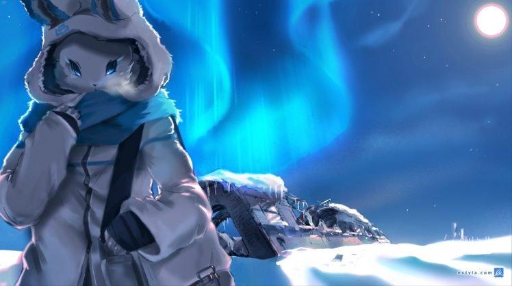 furry, Snow HD Wallpaper Desktop Background
