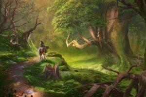 The Legend of Zelda, Link, Perona, Lost Woods