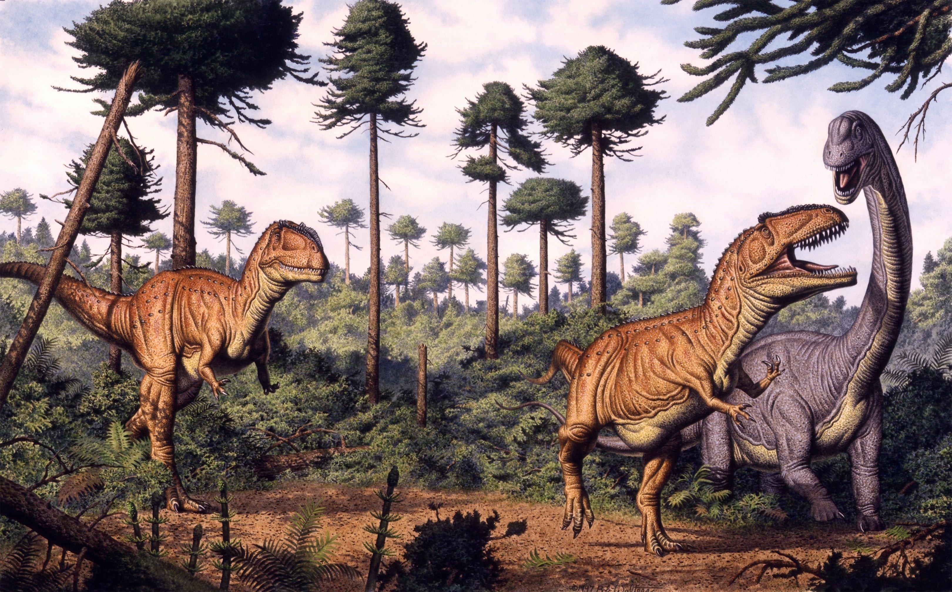 3240 x 2015 jpeg 1305kBBrachiosaurus