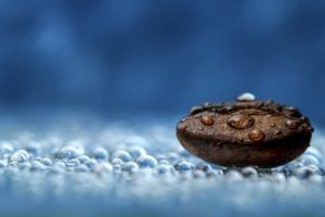 coffee beans, Water drops, Blue, Macro, Photography
