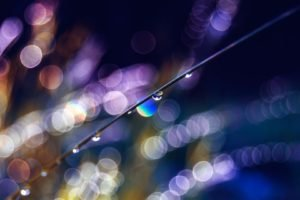 bokeh, Water drops, Photography