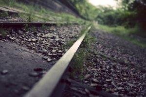 photography, Macro