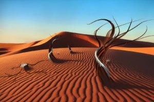 surreal, Desert