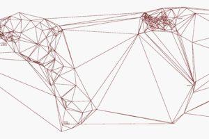 Feltron, Nicholas Felton, Map, Lines, World