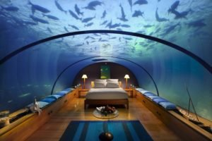 bedroom, Underwater, Fish, Aquarium
