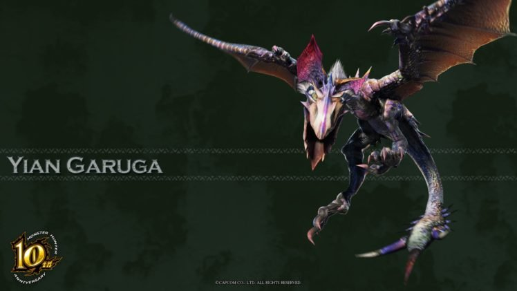 Monster Hunter Yian Garuga HD Wallpaper Desktop Background