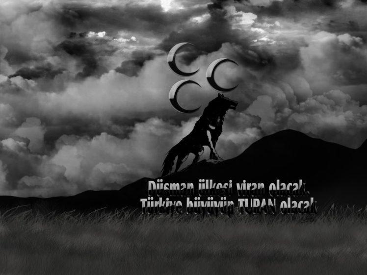 wolf, Turkish HD Wallpaper Desktop Background