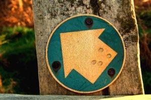 signs, Arrows